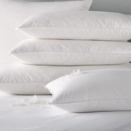 V 100% Cotton Duck Feather and Down Pillow